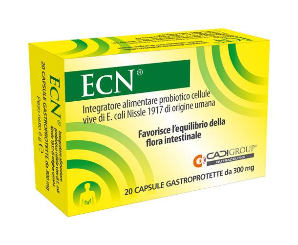 ecn-web